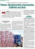 article CREA